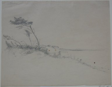 William Sidney Mount (American, 1807-1868). <em>Trees in Wind</em>, n.d. Graphite on paper, Sheet: 10 5/8 x 13 7/16 in. (27 x 34.1 cm). Brooklyn Museum, Augustus Graham School of Design Fund, 42.252 (Photo: Brooklyn Museum, CUR.42.252.jpg)