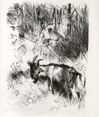 Lovis Corinth (German, 1858-1925). <em>The Billy Goat (Die Ziegenbock)</em>, 1920. Etching and drypoint on wove paper, Image (Plate): 9 15/16 x 7 1/4 in. (25.2 x 18.4 cm). Brooklyn Museum, Gift of Lewis Turner, 47.139.2.7 (Photo: Brooklyn Museum, CUR.47.139.2.7.jpg)