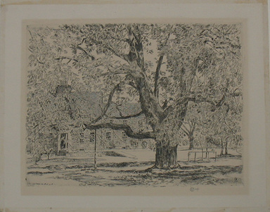 Frederick Childe Hassam (American, 1859-1935). <em>The Big Horse Chestnut Tree, Easthampton</em>, 1928. Etching Brooklyn Museum, By exchange, 48.209.2 (Photo: Brooklyn Museum, CUR.48.209.2.jpg)