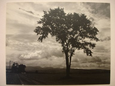 Walter Rosenblum (American, 1919-2006). <em>Vermont, 1949</em>, 1949. Chlorobromide photograph, 3 1/2 x 4 1/2 in.  (8.9 x 11.4 cm). Brooklyn Museum, Gift of Walter Rosenblum, 51.241.1. © artist or artist's estate (Photo: Brooklyn Museum, CUR.51.241.1.jpg)