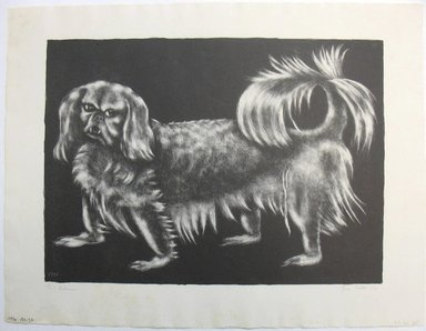 "George Biddle (American, 1885-1973). <em>""Pu,"" Pekinese</em>, 1937. Lithograph, 11 1/2 x 15 7/8 in. (29.2 x 40.3 cm). Brooklyn Museum, Gift of George Biddle, 67.185.35. © artist or artist's estate (Photo: Brooklyn Museum, CUR.67.185.35.jpg)"