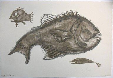 George Biddle (American, 1885-1973). <em>Three Fish</em>, 1956. Lithograph, 10 1/4 x 16 in. (26 x 40.6 cm). Brooklyn Museum, Gift of George Biddle, 67.185.66. © artist or artist's estate (Photo: Brooklyn Museum, CUR.67.185.66.jpg)