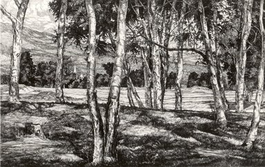 Luigi Lucioni (American, born Italy, 1900-1988). <em>Trees</em>, 1940. Etching on Japan paper, Plate: 7 1/2 x 11 7/8 in. (19.1 x 30.2 cm). Brooklyn Museum, Gift of Mrs. Harold J. Baily, 67.27.11 (Photo: Brooklyn Museum, CUR.67.27.11.jpg)