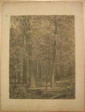 William Trost Richards (American, 1833-1905). <em>Forest Scene</em>, possibly 1866. Charcoal and touches of white on paper, Sheet: 23 7/8 x 17 7/8 in. (60.6 x 45.4 cm). Brooklyn Museum, Gift of Edith Ballinger Price, 72.32.1 (Photo: Brooklyn Museum, CUR.72.32.1.jpg)
