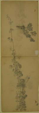 William Trost Richards (American, 1833-1905). <em>Foliage Study</em>, n.d. Graphite on paper, Sheet: 18 x 6 1/16 in. (45.7 x 15.4 cm). Brooklyn Museum, Gift of Edith Ballinger Price, 72.32.16 (Photo: Brooklyn Museum, CUR.72.32.16.jpg)