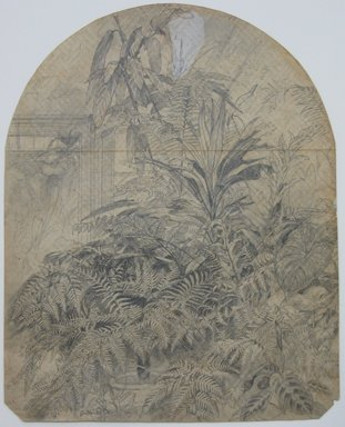 William Trost Richards (American, 1833-1905). <em>Ferns</em>, January 1860. Graphite on paper, Sheet: 10 x 7 7/8 in. (25.4 x 20 cm). Brooklyn Museum, Gift of Edith Ballinger Price, 72.32.31 (Photo: Brooklyn Museum, CUR.72.32.31.jpg)