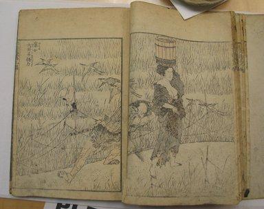 Katsushika Hokusai (Japanese, 1760-1849). <em>Hokusai Manga, Vol. IX</em>, 1817. Paper, 9 x 6 1/4 in. (22.9 x 15.9 cm). Brooklyn Museum, Anonymous gift, 76.151.83 (Photo: Brooklyn Museum, CUR.76.151.83_page28_29.jpg)