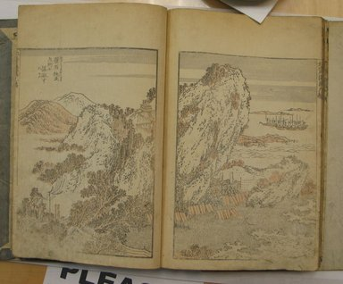 Katsushika Hokusai (Japanese, 1760-1849). <em>Hokusai Manga, Vol. IX</em>, 1817. Paper, 9 x 6 1/4 in. (22.9 x 15.9 cm). Brooklyn Museum, Anonymous gift, 76.151.83 (Photo: Brooklyn Museum, CUR.76.151.83_page50_51.jpg)