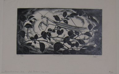 Grace Arnold Albee (American, 1890-1995). <em>Camouflage</em>, 1965. Wood engraving on paper, Sheet: 6 1/4 x 9 1/2 in. (15.9 x 24.1 cm). Brooklyn Museum, Gift of the artist, 76.198.65. © artist or artist's estate (Photo: Brooklyn Museum, CUR.76.198.65.jpg)