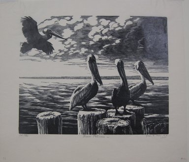 Grace Arnold Albee (American, 1890-1995). <em>Brown Pelicans</em>, 1968. Linocut on wove paper, 7 7/8 x 9 15/16 in. (20 x 25.2 cm). Brooklyn Museum, Gift of the artist, 76.198.72. © artist or artist's estate (Photo: Brooklyn Museum, CUR.76.198.72.jpg)