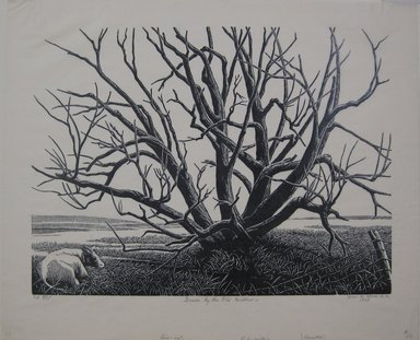 Grace Arnold Albee (American, 1890-1995). <em>Down by the Old Willow</em>, 1968. Linocut on wove paper, 9 x 12 in. (22.9 x 30.5 cm). Brooklyn Museum, Gift of the artist, 76.198.73. © artist or artist's estate (Photo: Brooklyn Museum, CUR.76.198.73.jpg)