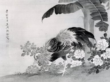 Shen Nanpin. <em>Rooster, Peonies, and Banana Plant</em>, early 18th century. Hanging scroll, ink and color on silk, painting only: 14 x 19 1/4 in. (35.6 x 48.9 cm). Brooklyn Museum, Gift of Mrs. Harold G. Henderson, 77.92.15 (Photo: Brooklyn Museum, CUR.77.92.15_bw.jpg)