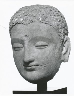 <em>Head of the Buddha</em>, 4th-5th century. Grey stucco with traces of polychrome, height: 9 1/2 in. (24 cm). Brooklyn Museum, Gift of Mr. and Mrs. Richard A. Bertocci, 84.131. Creative Commons-BY (Photo: Brooklyn Museum, CUR.84.131_view2_bw.jpg)