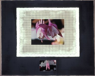 Michelle Stuart (American). <em>Correspondences: Time, Connecticut Fuchsia</em>, 1983. Lithograph and dye transfer photograph on paper, 24 x 29 1/8 in. (61 x 74 cm). Brooklyn Museum, Purchased with funds given by the Louis Comfort Tiffany Foundation, 85.57. © artist or artist's estate (Photo: Image courrtesy of the artist, CUR.85.57_artist_photograph.jpg)