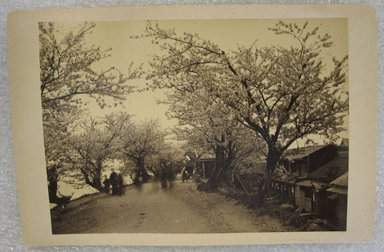 <em>View of Japan</em>, late 19th-early 20th century. Albumen silver photograph mounted on cardboard, with mounting: 4 5/16 x 6 7/16 in. (11 x 16.3 cm). Brooklyn Museum, Gift of Matthew Dontzin, 86.256.34 (Photo: Brooklyn Museum, CUR.86.256.34.jpg)