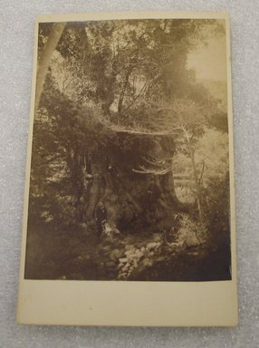 <em>View of Japan</em>, late 19th-early 20th century. Albumen silver photograph mounted on cardboard, with mounting: 4 3/16 x 6 7/16 in. (10.6 x 16.3 cm). Brooklyn Museum, Gift of Matthew Dontzin, 86.256.38 (Photo: Brooklyn Museum, CUR.86.256.38.jpg)