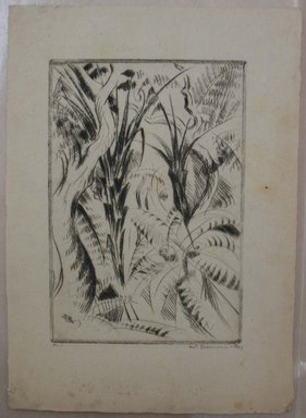 Werner Drewes (American, born Germany, 1899-1984). <em>San Francisco, Fern Trees II, Golden Gate Park</em>, 1926. Drypoint on laid paper, Image: 9 7/16 x 6 1/2 in. (24 x 16.5 cm). Brooklyn Museum, Gift of Henry Ross, 88.173.3. © artist or artist's estate (Photo: Brooklyn Museum, CUR.88.173.3.jpg)
