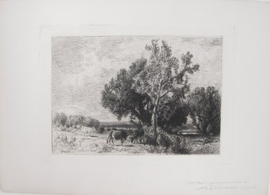 William Hart (American, born Scotland, 1823-1894). <em>Untitled (Cows in Pasture)</em>. Etching on simulated laid paper, Image (plate): 5 13/16 x 8 3/16 in. (14.8 x 20.8 cm). Brooklyn Museum, Gift of Dr. Clark S. Marlor, 88.6.5 (Photo: Brooklyn Museum, CUR.88.6.5.jpg)