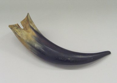 Plains. <em>Two Tone Horn</em>, 19th century. Cow horn, 3 x 13 in. (7.6 x 33 cm). Brooklyn Museum, Brooklyn Museum Collection, X1126.21. Creative Commons-BY (Photo: Brooklyn Museum, CUR.X1126.21.jpg)