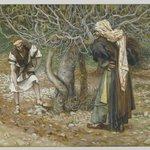The Vine Dresser and the Fig Tree (Le vigneron et le figuier)