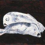 White Cod