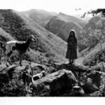 Rosa and Goats on Mountain Top