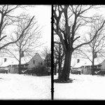 Farm, Snow, 48th Street at New Utrecht Road, Brooklyn
