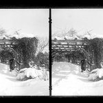 Prospect Park, Late Snow, Brooklyn