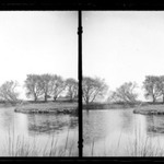Ryders Pond (Strome Kill), Looking East, Willows, Avenue S and East 32 Street, Gravesend, Brooklyn