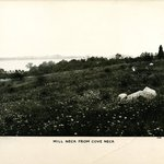 Mill Neck from Cove Neck, Long Island