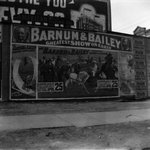 Barnum Circus, Broadway and Halsey Street, Brooklyn