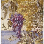 Grapes and Olives