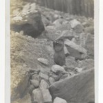 [Untitled] (A Marmot Standing in a Rocky Area)