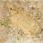 The Cotton-Tail Rabbit among Dry Grasses and Leaves