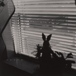 View from Window with Rabbit, Bayville, NJ