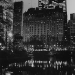 Plaza, At the Pond, Central Park from the series Landmarks
