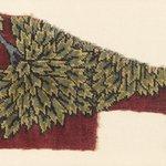 Main Field Fragment of a Tree Carpet
