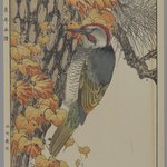 [Untitled] (Woodpecker)