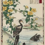Japanese Rose and Cormorants, from the series Baireis Picture Album of Birds and Flowers