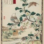 Tea Plant Blossoms (Camellia sinensis) and White-cheeked Starling, from the series Baireis Picture Album of Birds and Flowers