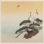 Cranes on a Pine Tree