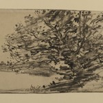 Study of Trees