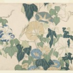 Morning Glories and Tree Frog, from an untitled series known as Large Flowers