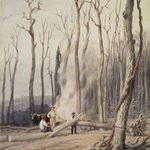 Spring--Burning Fallen Trees, in a Girdled Clearing, Western Scene