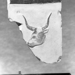 Relief Representation of a Bulls Head