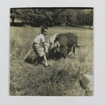 [Untitled] (Boy Feeding Cow)