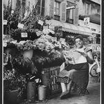 Flower Vendor, Paris