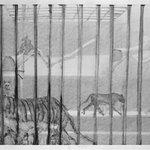 Cage-Bronx Zoo