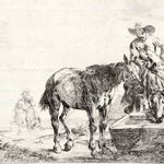 Two Horses at a Trough