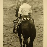 [Untitled] (Mexican rider on horse)